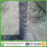 亜鉛コーティングの高い抗張馬の塀