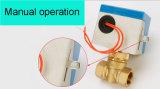 Ervaren OEM Fabrikant van de Klep van de Controle voor de Rol van de Ventilator (BS-818-20)