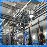 Apparatuur van de Installatie van het Slachthuis van het Vee van Halal de Volledige Automatische Slachtende