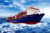 De Vrachtwagen van de container/het Verschepen van Ningbo/China aan de Dienst van de Logistiek van Malta