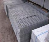 Comitato galvanizzato della rete metallica dal fornitore della Cina