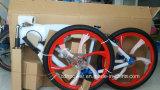 Fahrrad mit Mag-Rad und Gas-Becken baute Rahmen-Fahrräder auf