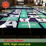 für Papierherstellung-Masse 100%Wood (CP0015)