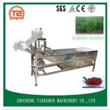 Prix de machine de lavage et de machine de nettoyage à sec de rondelle de fruit