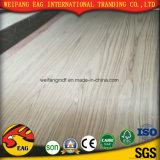 Compensado de madeira de carvalho vermelho/Teca Expert Fabricação Walnut/Beech na banheira de vender