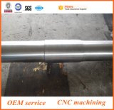 Asta cilindrica lavorata asta cilindrica lavorante di CNC dell'acciaio inossidabile di alta precisione