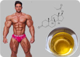 Azetat-Prüfungs-As-halb fertiges Öl des Bodybuilding-100mg/Ml Trenbolone