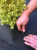 Azione della graffetta del panno a terra da vendere