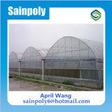 販売に使用するプラスチック温室Hidroponica