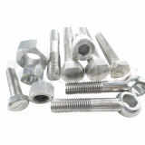 Hot Selling High Quality Exotic Alloy Hastelloy C-22 Hex Bolt / Hex Nut / Allen Bolt / Stud / Rondine Washer