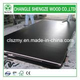 12 mm, 15 mm, 18 mm Encofrado / Concreto / Marino / de carpintería