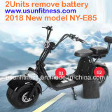 Heißer Verkaufs-entfernen elektrischer Stadt-Coco-Roller Ny-E85 mit 2units Batterie