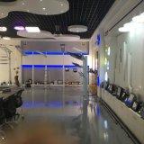 IP67 Resistente al agua 120lm/W MW Conductor 5 años de garantía de Iluminación Exterior LED