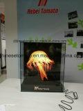最新および最も魅力的な広告3Dホログラムのファン