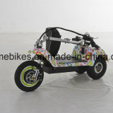 3 Rueda E Bicicleta eléctrica con batería de litio