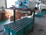 Erstklassige Säure-Batterie-Solarbatterie 200ah des Leitungskabel-12V für PV-Energie-Speicher-Gebrauch
