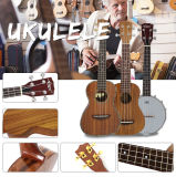 Мешок Facotry мешка гитары ODM Wholeprice OEM Китая басовый
