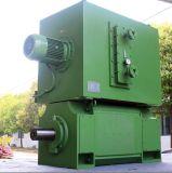 Мотор DC группы Шанхай электрический