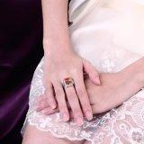 Goud Geplateerde Ring voor de Juwelen van het Huwelijk van het Zirkoon van Vrouwen