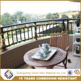 Настраиваемые Balustrade Design/элегантный традиционный чугунный балкон поручни