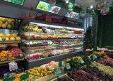 Refrigerador frío de la visualización del alimento, congelador abierto para los casos de visualización del supermercado