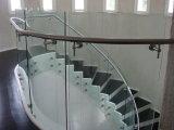 La mejor barandilla de cristal de alta tecnología de la escalera del acero inoxidable del precio de fábrica de la calidad