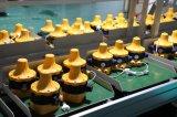 Водяной насос Wasinex электронных/автоматического регулирования давления с европейскими разъем