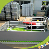 Gegalvaniseerde het Werpen van het Varken het Werpen van het Varken van de Apparatuur van het Landbouwbedrijf van de Varkensfokkerij van Kratten Pennen voor Verkoop