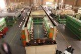 De geëmailleerden Draad van het Aluminium van het Koper Beklede voor de Ontsteking van de Bougie