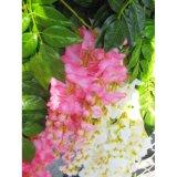 Plastikblatt-Glyzinien künstliche BlumenBracketplant Dekoration