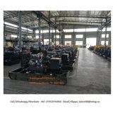 공급 Yuchai, Quanchai, Yanmar, Lovol 의 Deutz 힘 전기 디젤 엔진 발전기 공장