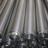 304 mangueiras onduladas/luva do metal flexível de aço inoxidável para a água