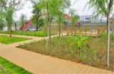 슈퍼마켓과 가정 정원 훈장을%s 인공적인 잔디 도와를 정원사 노릇을 하기