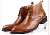 Le cuir gentil de vache à modèle a fait à des hommes des gaines de chaussures