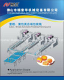 Cookies wafer Spooncake Cake Autoamtic flow Wrapping Machine
