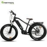 [48ف] [1000و] [بفنغ] منتصفة إدارة وحدة دفع [أولترا] نظامة لون عرض درّاجة كهربائيّة مع إطار العجلة سمين