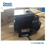 La norma IEC 100% de potencia Motor asíncrono Dual-Capacitor