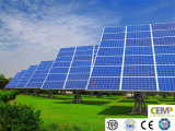 il comitato solare policristallino 265W ha creato un nuovo futuro di energia
