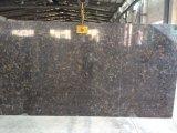 Marmeren Ader LF-V008/de Plak van het Kwarts voor Keuken/Badkamers/Muur/Vloer