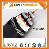 IEC, DIN, BS 의, 격리되는, 450/750V AC 구리 지휘자, XLPE PVC에 의하여 보호되는 땋기 넣어지는 유연한 조종 케이블