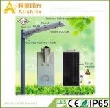 庭公園のためのPIRセンサーが付いている1つの太陽街灯の15Wすべて