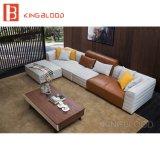ソファーの一定の部門別のソファのホーム家具