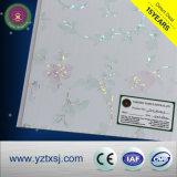 Drucken-Panel Belüftung-Decken-Fliesen mit silberner Zeile