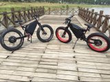 2018 جعل في الصين [72ف] [5000و] [هي بوور] [إندورو] كهربائيّة سمين إطار العجلة درّاجة ثلج درّاجة