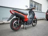 Moto électrique à grande vitesse du Brésil avec 1000W