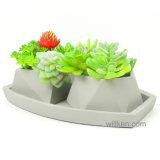 装飾的なセメントの水気が多い鍋の小型サイズ