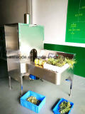 Factory Direct Supply Vegetable Peeling Machine