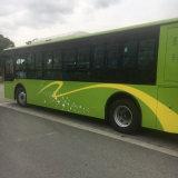 Bus elettrico poco costoso del bus 10m della città di buona condizione