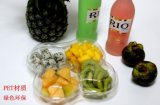 свежие фрукты пластичного цвета любимчика коробки фрукт и овощ 500g упаковывая отрезали внимательность плодоовощ решетки ветрянки 4