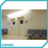 De hete Verkopende Deur van het Ziekenhuis van de Lucht van het Staal Strakke Binnenlandse